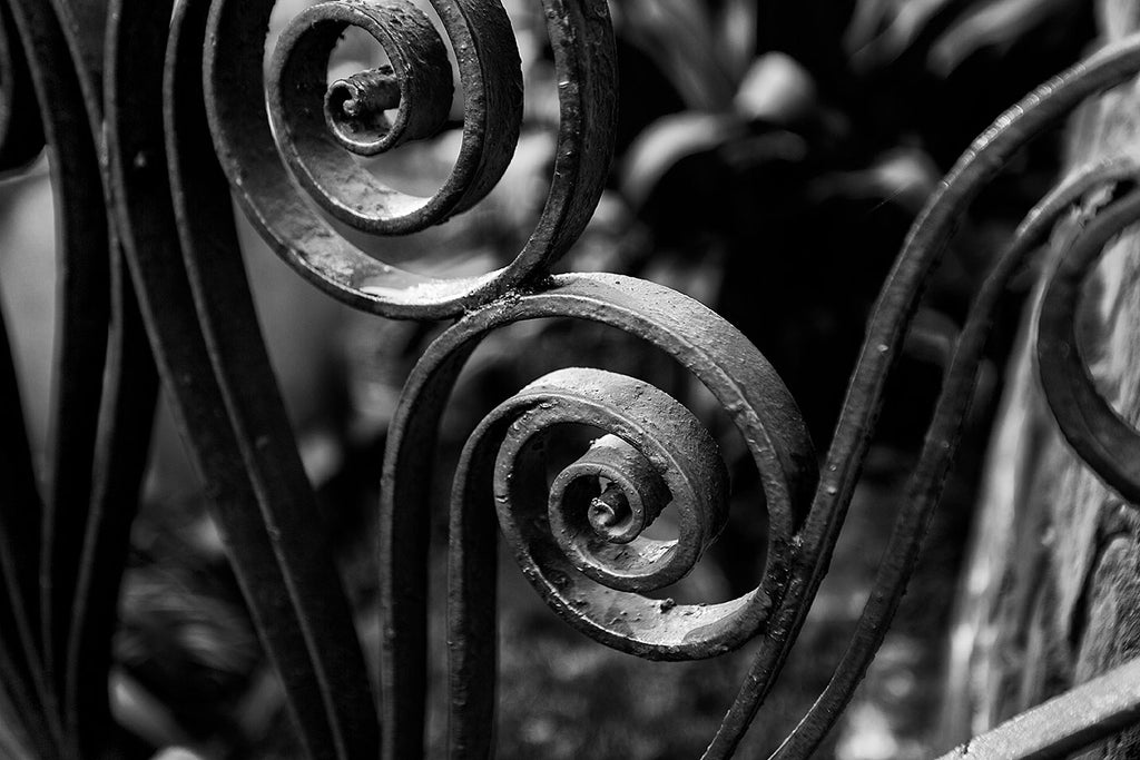Black and white photograph of two ornamental wrought iron fence scrolls in Charleston.