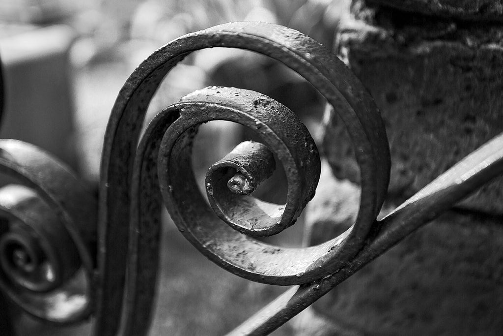 Black and white detail photograph of an antique decorative spiral iron fence scroll in Charleston, South Carolina.