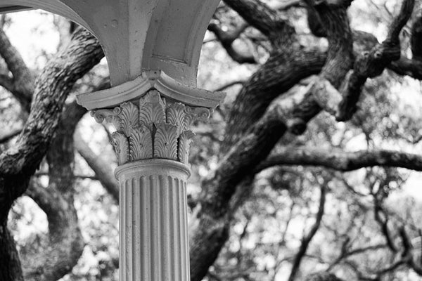 Black and white photograph of one of the ornate columns of the gazebo in White Point Park (the Battery) in Charleston, South Carolina.