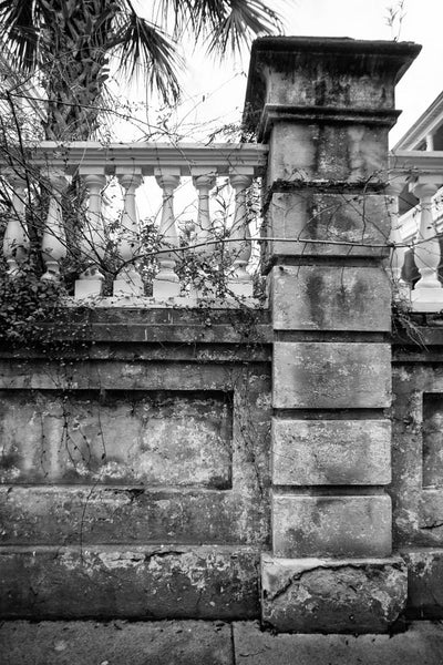 Black and white photograph of a beautiful old wall around the garden and property of one of Charleston's historic mansions.