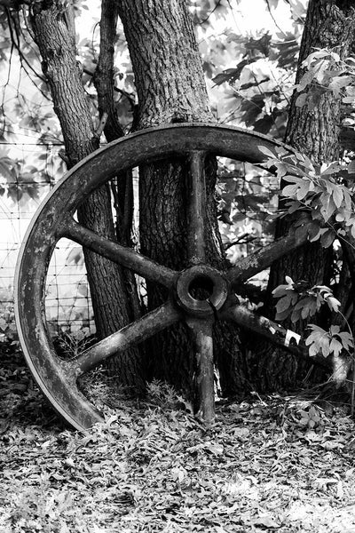 Black and white photograph of a big industrial wheel propped against trees in the rural countryside.
