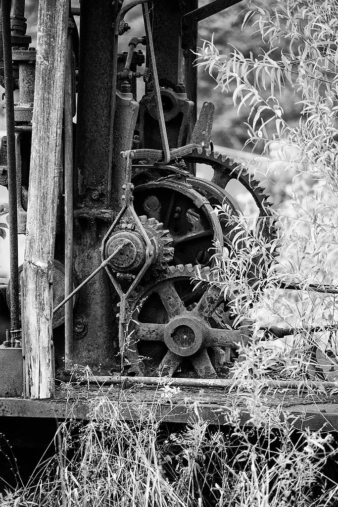 Black and white detail photograph of an abandoned machine with its rusty gears standing in a field among tall weeds.