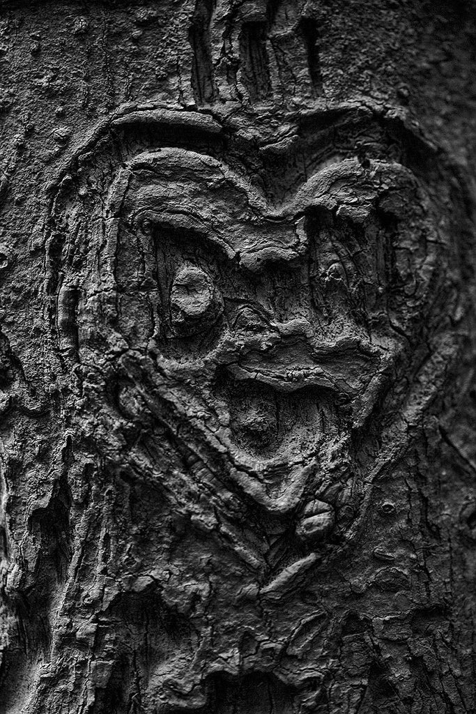Black and white macro photograph of a heart and initials carved into a tree, which has transformed over time into a sinister-looking heart-shaped face.