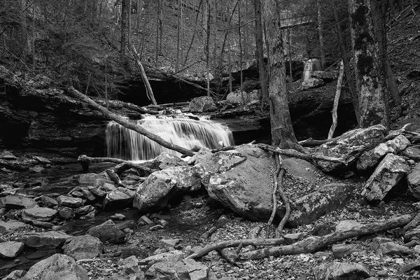 Black and white landscape photograph of a waterfall on Daniel Creek, deep in the bottom of Cloudland Canyon, Georgia.
