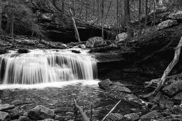 Black and white landscape photograph of a waterfall on Daniel Creek in the dark forest at the bottom of Cloudland Canyon.