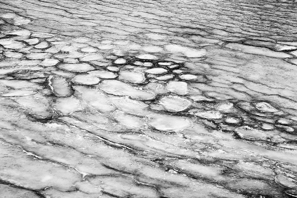 Black and white landscape photograph of the abstract patterns made by cracked and segmented pond ice.