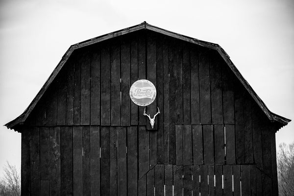 Black and white photograph of a black barn with a deer skull and vintage Pepsi sign nailed over the doors
