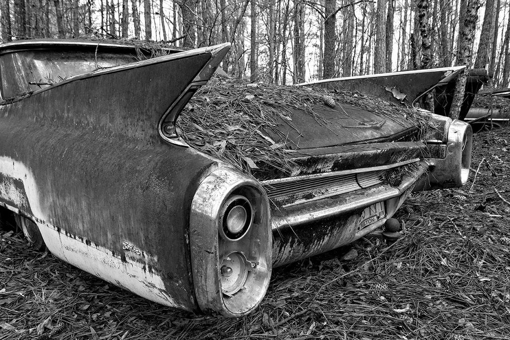 Black and white fine art photograph of a the space age rocket-style tail fin on a rusting, abandoned classic American car left in the forest.