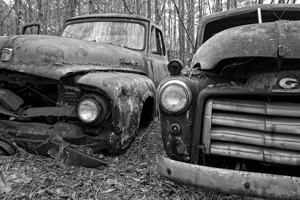 Black and white fine art photograph of two classic antique trucks rusting away side by side in the forest.