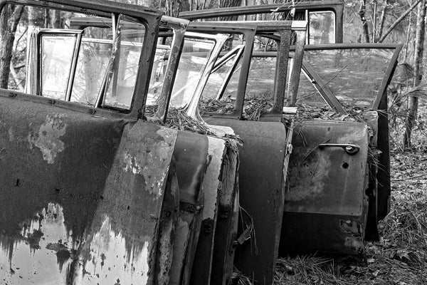 Black and white fine art photograph of nine rusty doors from antique, classic American cars, stacked upright in a forest that was once a junkyard.