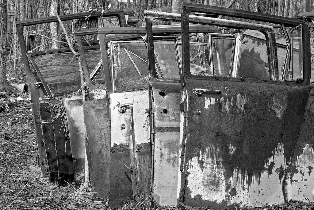 Black and white fine art photograph of a row of rusty doors from antique, classic American cars, stacked upright in a forest that was once a junkyard.