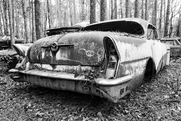Black and white fine art photograph of a classic American car seen from the back as it's rusting in the forest but still displaying an old AAA sticker.