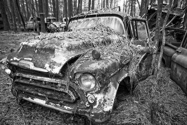 Black and white fine art photograph of a classic antique Chevy pickup truck rusting away in a pine forest and covered with pine straw.
