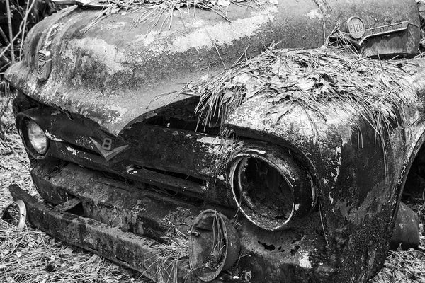 Black and white photograph of a classic antique pickup truck with only one head lamp rusting away in the woods and covered with pine straw.