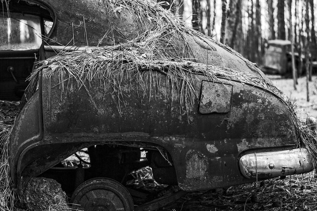 Black and white fine art photograph of the rusty rear fender of a wrecked and abandoned vintage roadster automobile collecting pine needles in the forest.
