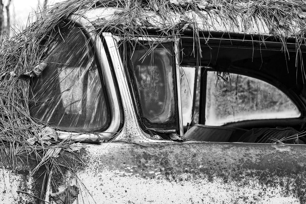 Black and white fine art photograph of a rusty 1950s classic American car abandoned in the woods and covered in pine straw.