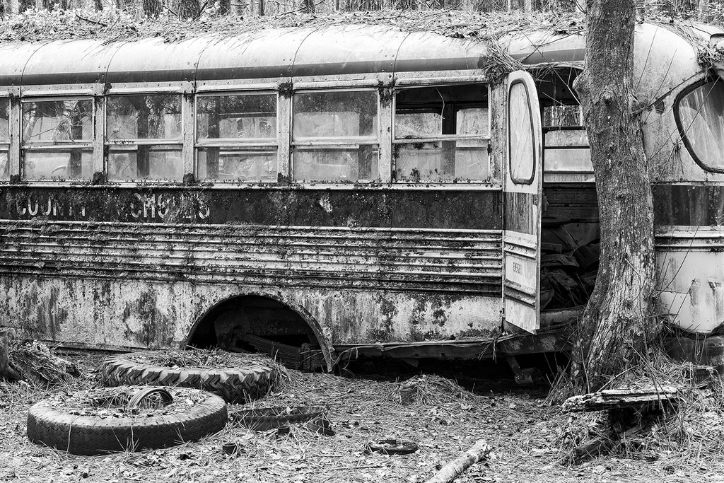 Black and white fine art photograph of a crusty, abandoned yellow school bus abandoned in the forest.