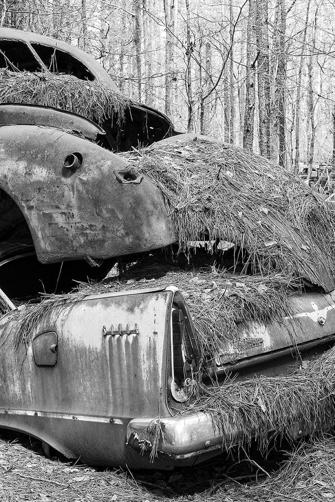 Black and white photograph of two rusty classic American cars piled on top of each other in the woods.