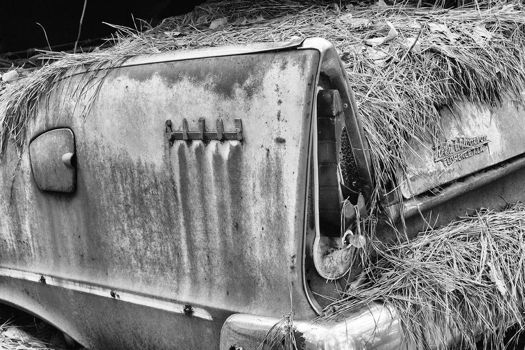 "Black and white fine art detail photograph of the tail fin of a rusty, junked classic American car in the woods. The side of the car features a stylized logo that says ""Savoy."""