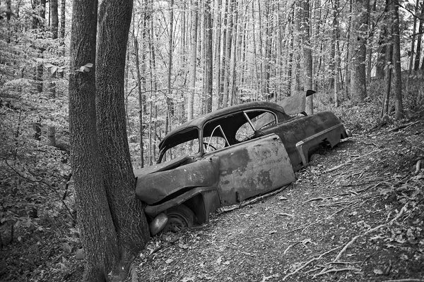 Black and white fine art photograph of a wrecked and abandoned classic American car that had been driven down a steep hill into a tree, possibly up to 70 years ago. There's no longer even a road at the top of the hill.