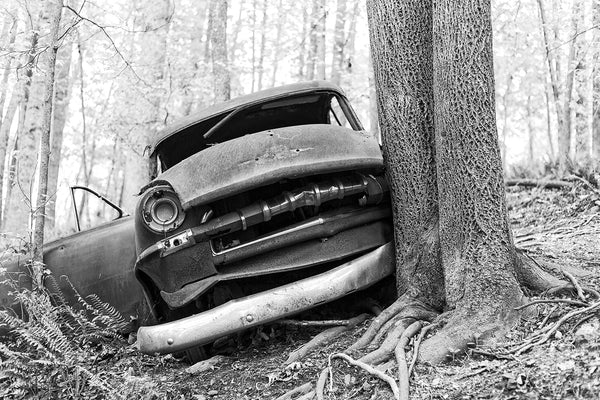 Black and white photograph of a wrecked and abandoned classic American car found in the forest.