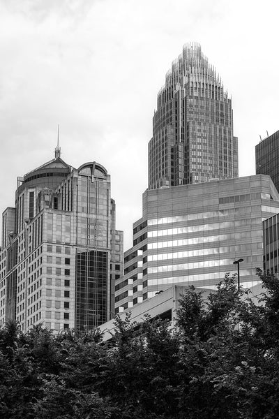 Black and white photograph of tall buildings in Charlotte, North Carolina as seen from downtown's Romare Bearden Park.