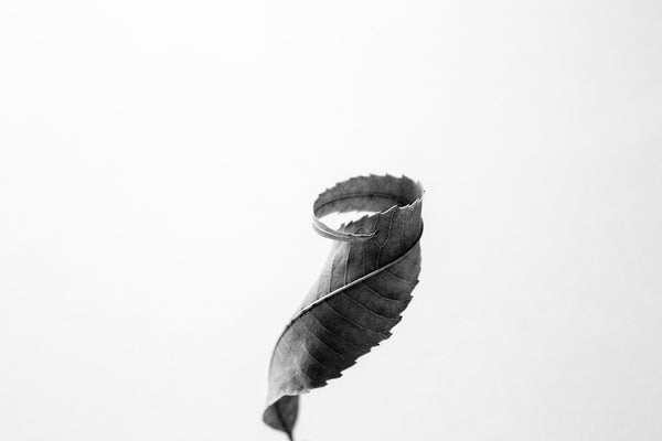 Black and white macro photograph of a single tiny curved leaf against a simple white background.