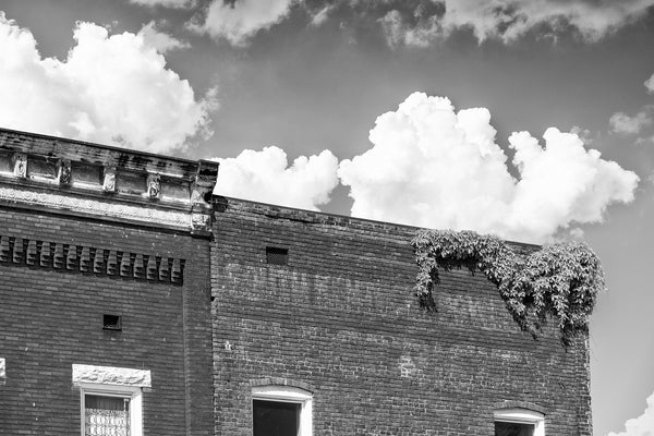 "Black and white photograph of an old utility office building with a faded sign on front that says ""Southern Power and Electricity,"" with ivy growing along its roofline."