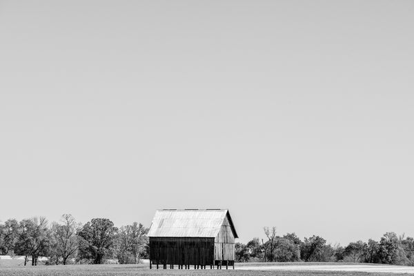 Black and white photograph of an old barn on stilts set amidst the broad bright landscape of Earth and sky in the Mississippi Delta.