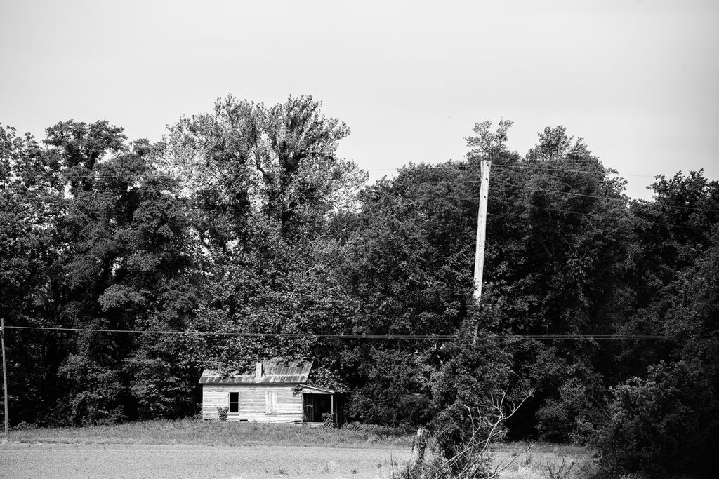 Black and white photograph of an old wooden shack on the edge of a farm field and being overtaken by the woods.