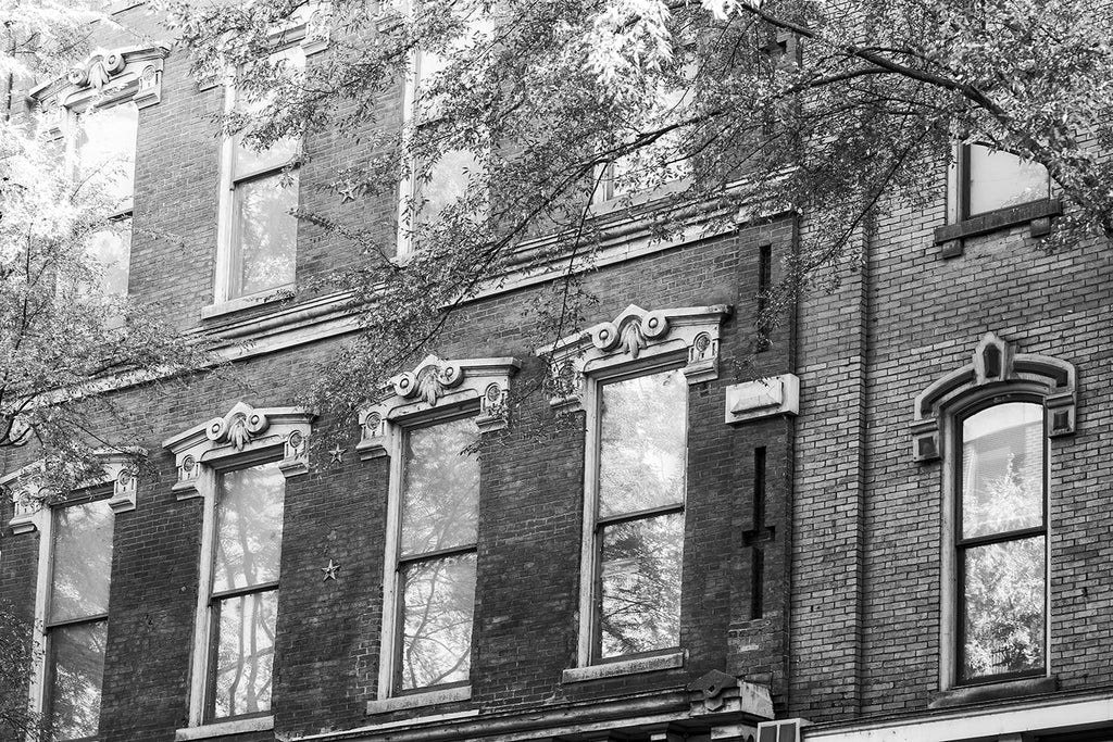 Black and white photograph of leafy trees and historic windows along Nashville's 2nd Avenue entertainment district. Most of these buildings were built between 1870 and 1890, when the street was called Market Street. The buildings were originally warehouses and retail shops selling goods transported in from the nearby Cumberland River.