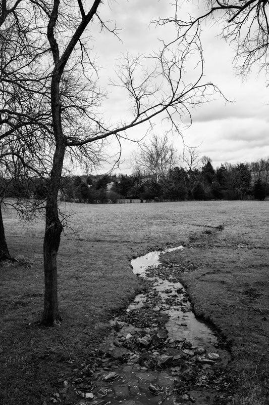 Black and white landscape photograph of a small creek winding through the grass of an open field on a gloomy, atmospheric day.