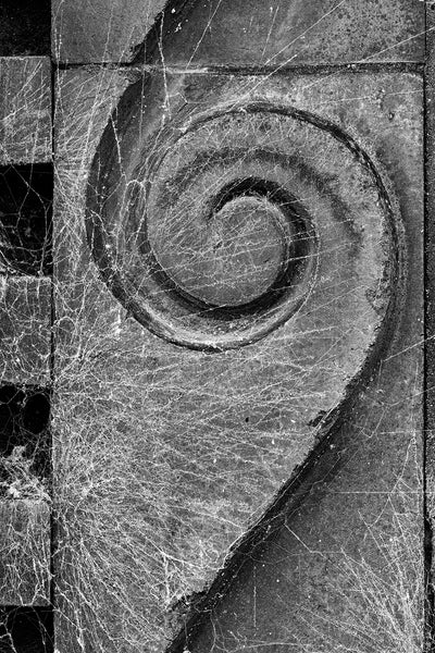 Black and white architectural detail photograph of an antique spiral detail covered with cobwebs on the exterior of an old building.
