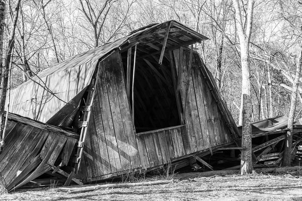 Black and white photograph of a fallen wooden barn with the hayloft sitting intact on the ground.