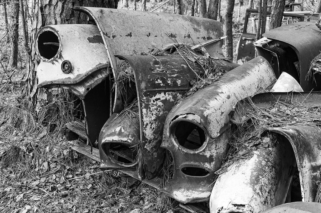 Black and white photograph of a tightly stacked row of classic antique car fenders found in the forest.