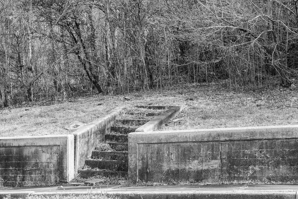 "Black and white architectural detail photograph of old cement steps leading uphill onto an abandoned and thickly overgrown lot where a house once stood. The photo is titled ""neighbors"" because there is a companion photo of similar steps next door on the same street."