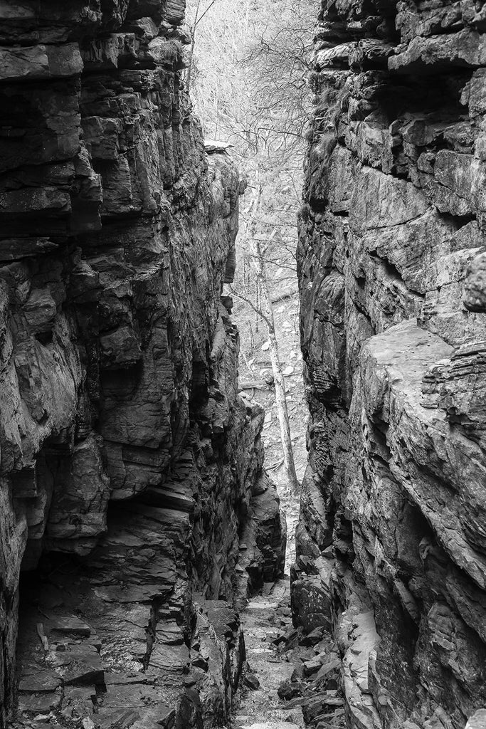 Black and white landscape photograph looking down the stone door, a hiking trail between two tall stone walls that leads down to the base of a cliff with a tree on the other side.