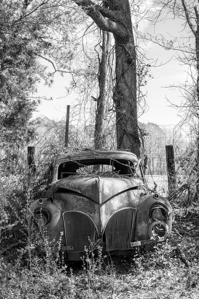 Black and white photograph of a rusty antique automobile abandoned in the country amongst weeds and tall trees.
