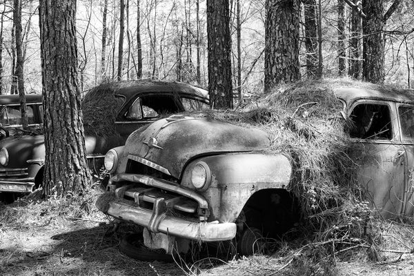 Black and white photograph of a a row of abandoned antique cars that look somewhat like they were parked at a drive-in movie and never left.
