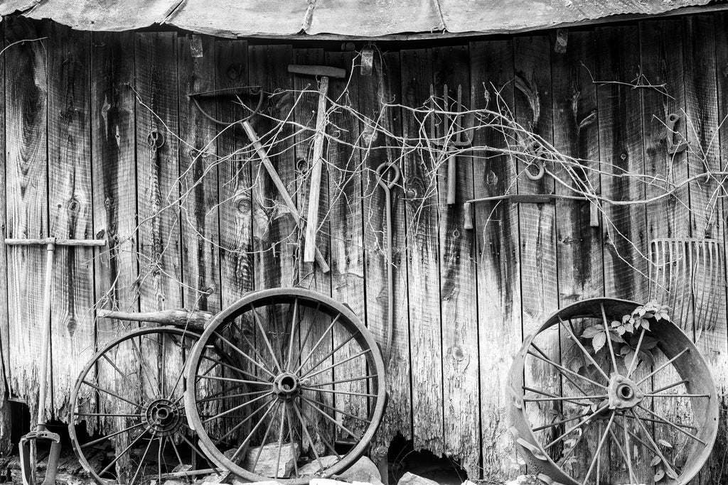 Black and white photograph of a weathered old wooden shed with rusty antique tools hanging on its exterior wall.
