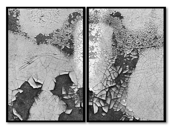 Set of two black and white abstract photographs of cracked and peeling paint on the door of a rusting old car. These photographs were shot with a macro lens of two side-by-side areas of rust on the door of an old wrecked car.