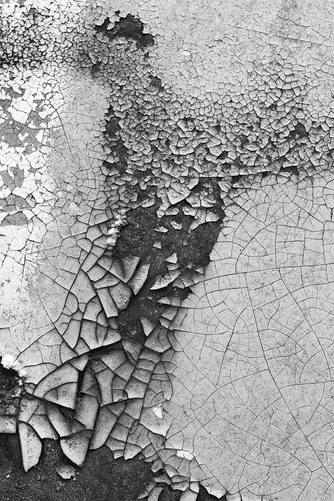 "Black and white abstract photograph of cracked and peeling paint on the door of a rusting old car. Available alone or as a matched set of two in the ""Sets and Groupings"" portfolio."