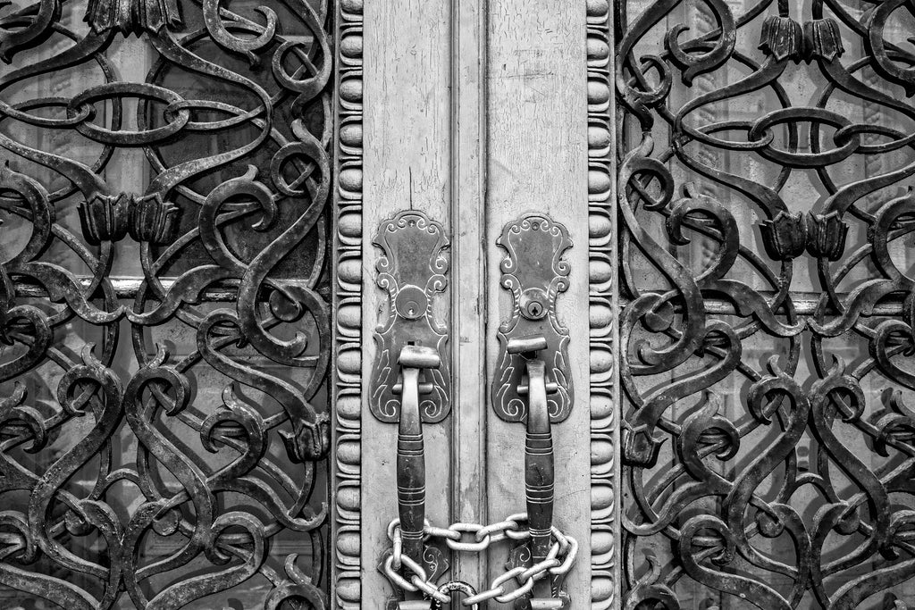 Charleston Farmers and Exchange Bank (Ironwork Detail) - Black and White Photograph (DSC02761)