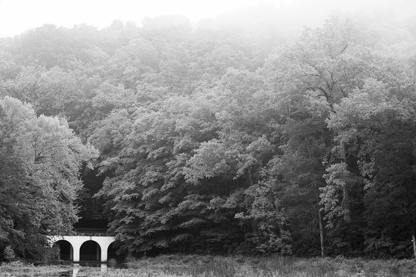 Black and white photograph of a foggy wooded landscape punctuated by a structure with stark white arches.