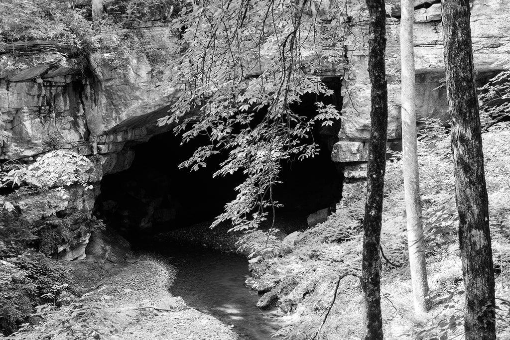 Black and white photograph of a Cave Mouth in the Deep Woods