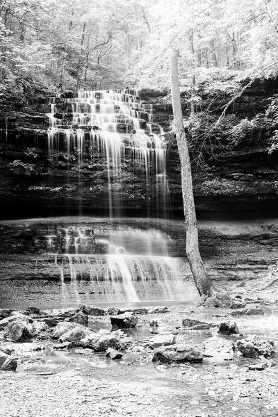Black and white landscape photograph of sunlight splashing across the treetops and streams of a cascading waterfall in the woods.