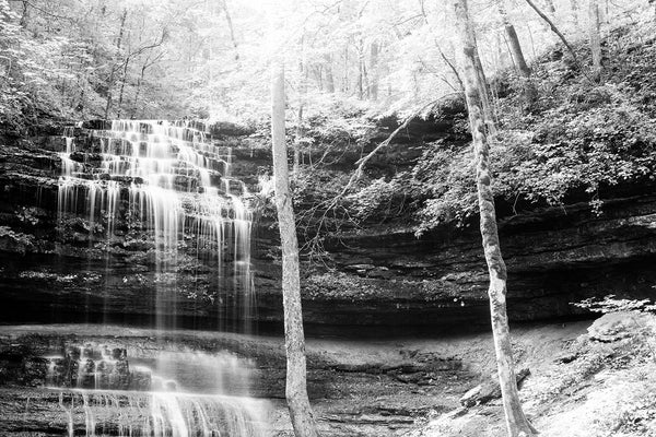 Black and white landscape photograph of sunlight catching the trees and streams of a cascading waterfall deep in the forest.