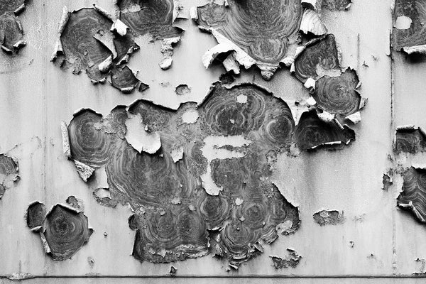 Black and white photograph of peeling paint and rusty ring patterns on the metal wall of an old railroad car.