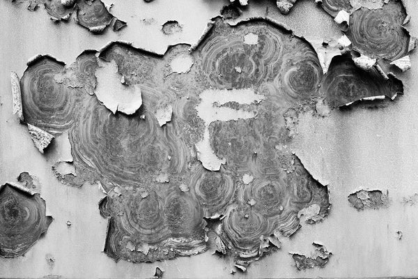 Black and white abstract photograph of peeling paint and rusty ring patterns on the metal wall of an old railroad car.
