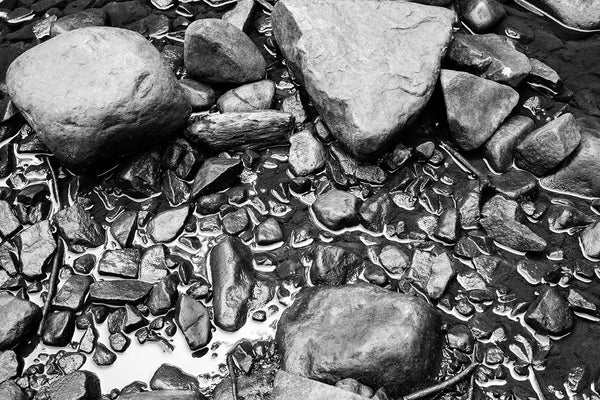 Black and white photograph of wet rocks in a shallow pool of water near the river's edge.